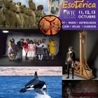 DISECCIÓN 16 OCTUBRE 2013