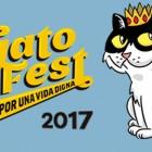 GATO FEST 2017