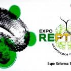 EXPO REPTILES, ARTRÓPODOS Y ANFIBIOS 2017