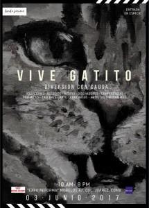 1 VIVE GATITO