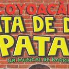 RATA DE DOS PATAS