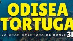 ODISEA TORTUGA / OFRENDA DE MASCOTAS