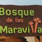 BOSQUE DE LAS MARAVILLAS, EL TALLERCITO, CEREBRO EN CONSTRUCCIÓN EXHIBICIONES